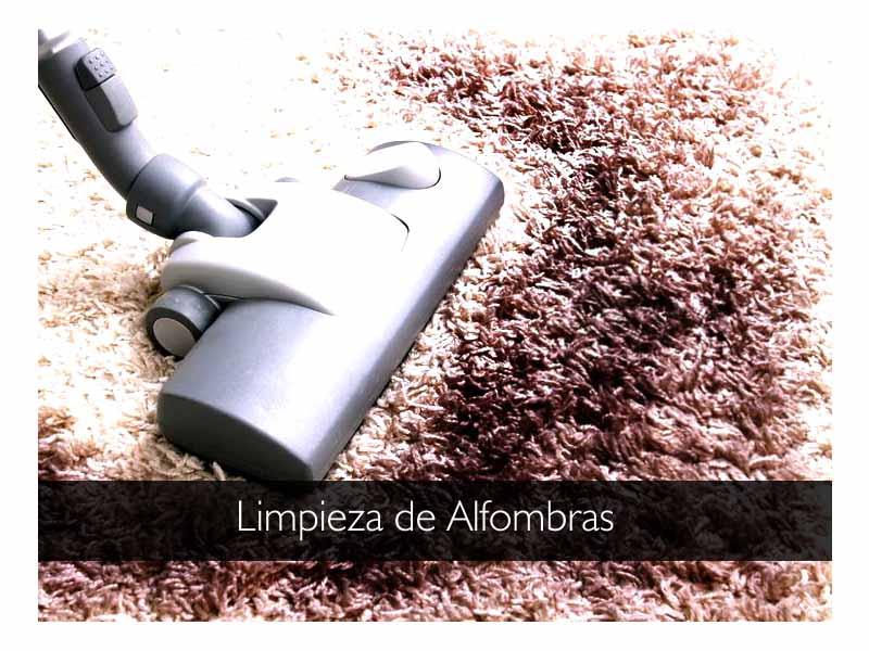 Jetcleaners limpieza de alfombras - Limpiador de alfombras ...